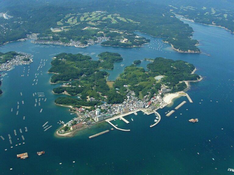 ဂျပန်ရှိလူကုန်ကူးခြင်းရဲ့ သရုပ်မှန် (သို့မဟုတ်) ပြည့်တန်ဆာလုပ်ငန်းတည်ရှိရာကျွန်း