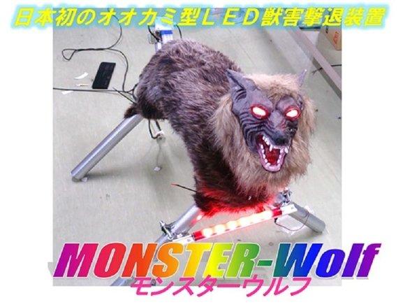 """တောရိုင်းကောင်တွေကိုရှင်းလင်းမယ့် """" Monster Wolf"""""""
