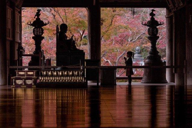 Nara ရှိဘုရားကျောင်းမှာ သမီးလေးကြီးပြင်းလာပုံကိုကြည့်ပြီး ပီတိဖြစ်နေသောဖေဖေ….
