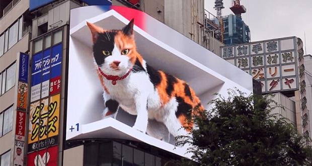 တိုကျို Shinjuku က Giant Cat !!!